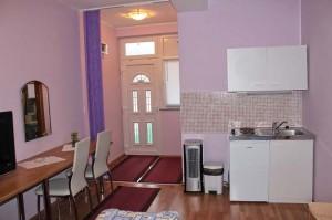 Apartment with kitchen Lucija